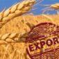 Край лидирует по экспорту продукции АПК в СФО.
